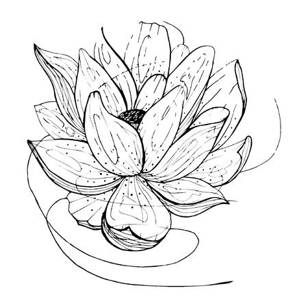 flower etching style vector eps10 Standard-Bild - 105778918