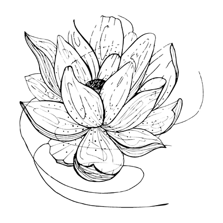 flower etching style vector eps10 Illustration