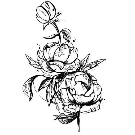 flower etching style vector eps10 Standard-Bild - 105813417