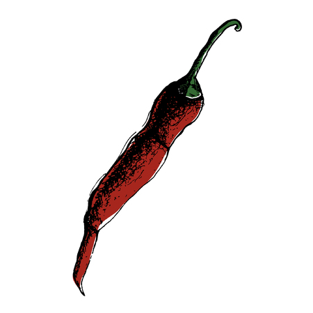 Chili Pepper hand drawn vector illustration. Vegetable artistic style object. Isolated hot spicy mexican pepper, sliced and crushed pieces, seed. Detailed vegetarian food drawing. Farm market Paprika eps10 Standard-Bild - 110199874