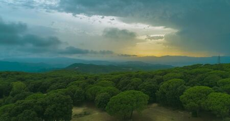 Landscape in which a large green pine forest and a cloudy sky with sunset can be seen. Foto de archivo