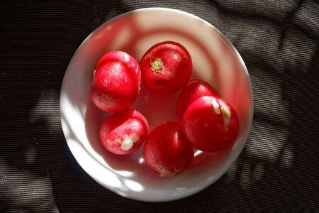Red crunchy radish