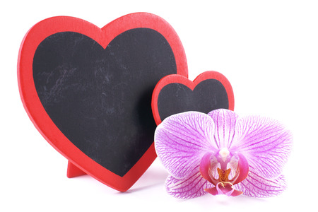 Heart, orchid, Valentine s Day photo
