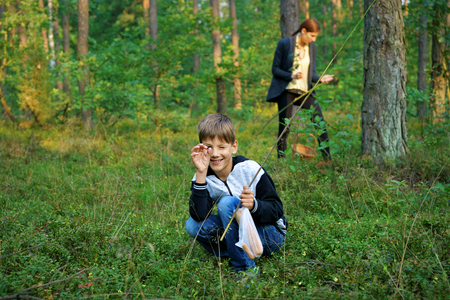 Boy collecting blueberries and mushrooms, in the background Woman, forest Stockfoto