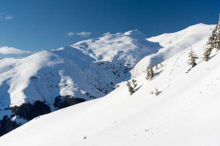 Winter landscape. Rodnei Mountaisn, Transylvania, Romania
