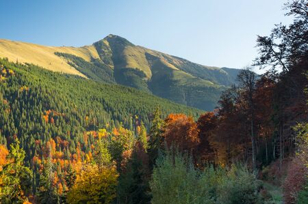 Mountain Landscape - Transilvania, Romania, Freedom, Hiking Banco de Imagens