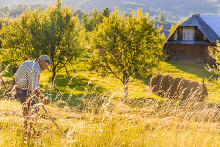 Senior farmer using scythe to mow the lawn traditionally with rural landscape in summer light Imagens