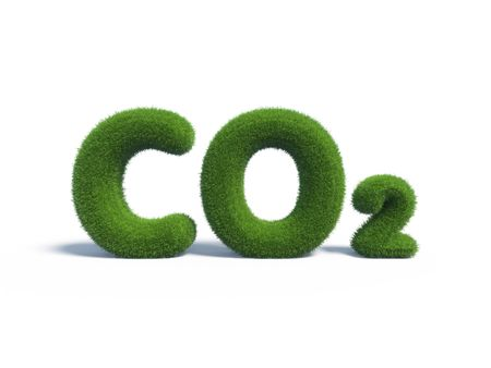 co2 green grass in the form of letters Stock Photo