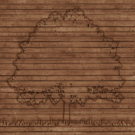 contour tree depicted on the old wooden planks background photo