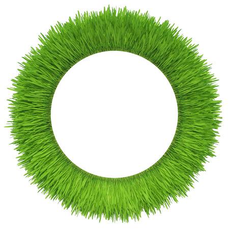 ホワイト バック グラウンド新鮮な緑の芝生に分離された緑の草 写真素材