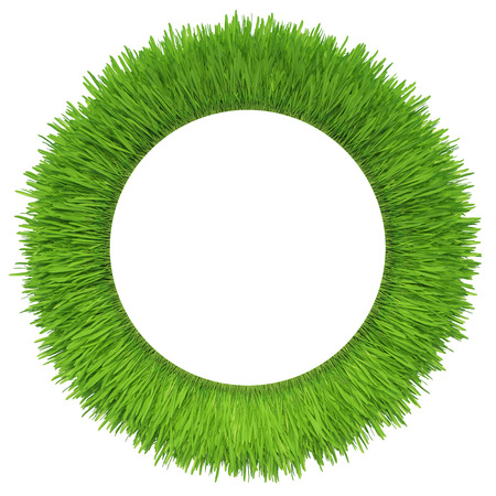 green grass isolated on white background  fresh green grass Banco de Imagens - 27143476