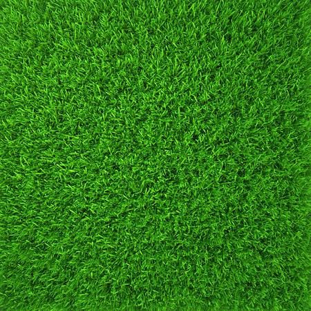 green grass  natural background texture  fresh spring green grass Banco de Imagens - 28129659