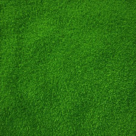 Hierba verde textura de fondo natural fresca primavera verde hierba Foto de archivo - 28129768