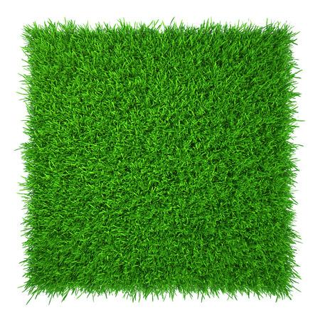 groen gras natuurlijke achtergrond textuur verse lente groen gras