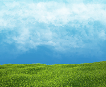 Field of green grass and sky with clouds