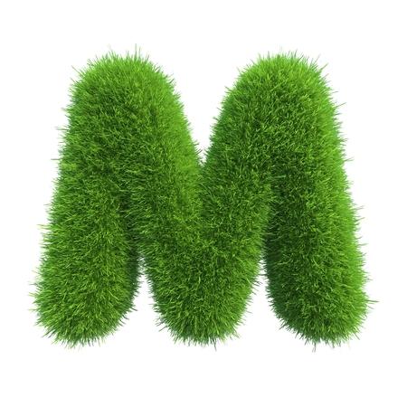 Carta de la hierba verde fresca aislado en un fondo blanco Foto de archivo - 34449015