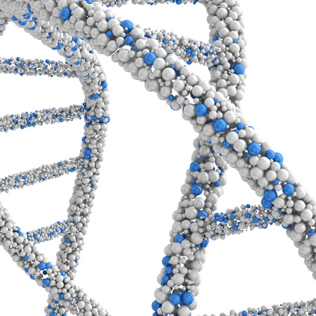 approximate: Approximate DNA molecule isolated on white background.