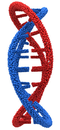 guanine: Red and Blue DNA molecule closeup. 3d render on a white background.