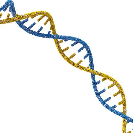 Moléculas de ADN. 3d sobre un fondo blanco. Foto de archivo - 38196440