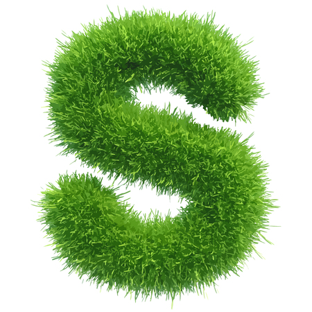 grass isolated: Vector small grass letter s on white background.