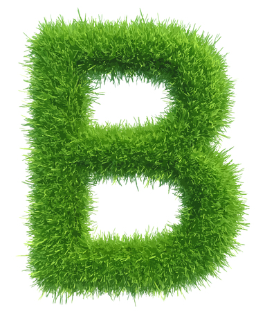 Vector capital letter B from grass on white background. Illustration