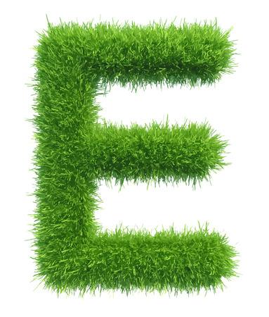 e white: Vector capital letter E from grass on white background.