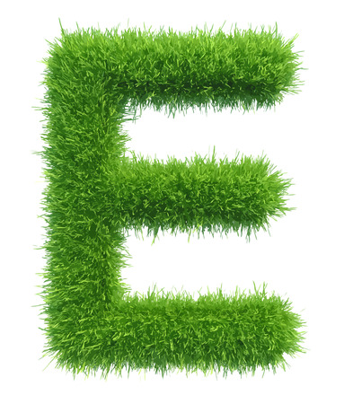 Vector capital letter E from grass on white background.