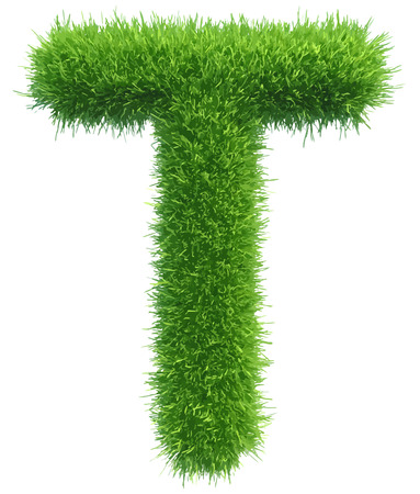 t background: Vector capital letter T from grass on white background. Illustration