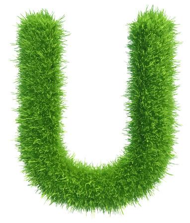 白い背景の上の草からベクトル大文字 U。  イラスト・ベクター素材