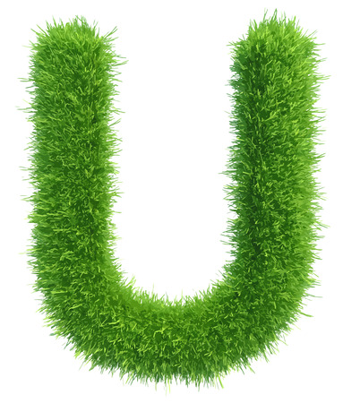 Vector capital letter U from grass on white background.