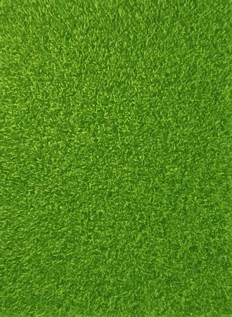 Vector background texture of fresh green grass.