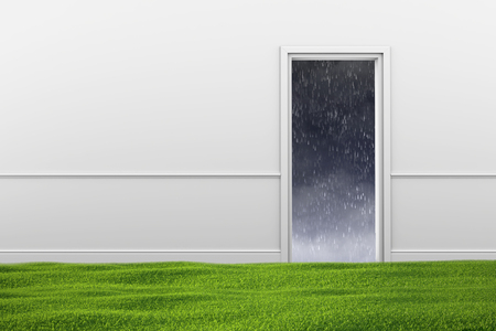Green lawn on the floor in the room and the doorway with weather out door.