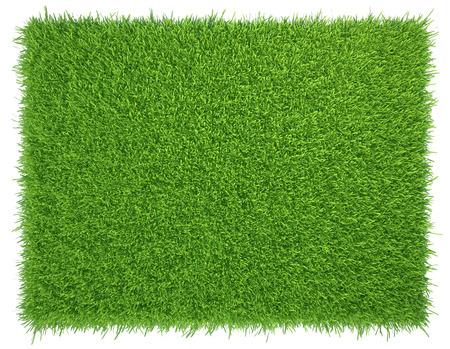 Grünes Gras. natürliche Hintergrundbeschaffenheit. frischem grünen Gras Frühjahr. Standard-Bild