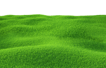Green grass growing on hills with white background top view. 3d render