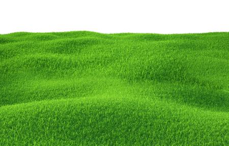흰색 배경에 상위 뷰 언덕에 성장하는 녹색 잔디. 3d 렌더링