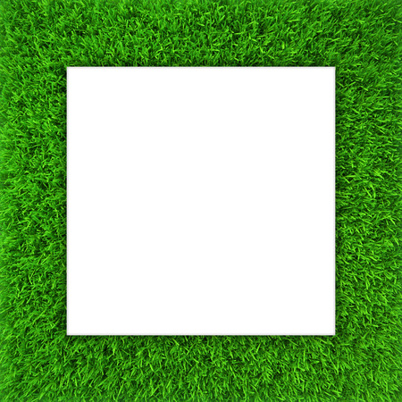 Green grass frame. Background for design website.