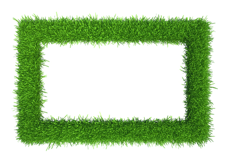 Green grass frame with copy-space. Square border template isolated on white background. Abstract plant texture. Organic design 3d rendering Stock Photo