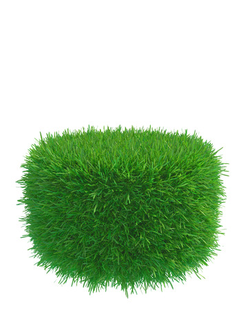 Round piece of cropped grass to be installed. 3d rendering
