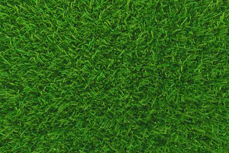 Green grass. background texture. fresh spring green grass. 3d rendering Banque d'images - 129505548