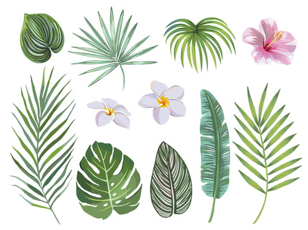 hand drawn Set of tropical leaves and flowers. vector design concept Stock Illustratie