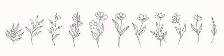 Set of cute hand drawn flowers, branches, leaves. Vector line arrangements for greeting card or invitation design 일러스트