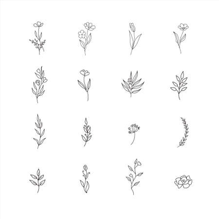 Set of cute hand drawn flowers, branches, leaves. Vector line arrangements for stories highlights, greeting card or invitation design