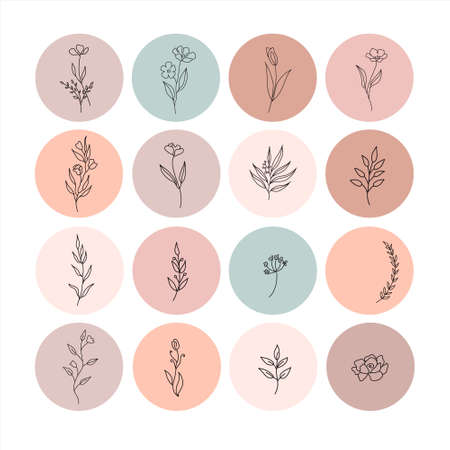hand drawn vector set flower icons templates in circles, - social media story highlights cover in trendy linear style