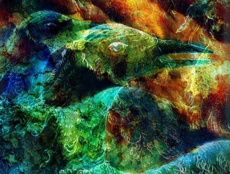 animal bird: the phoenix bird   collage. Stock Photo