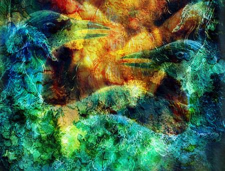 elemental: the phoenix bird  collage and crackel structure.