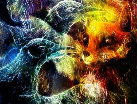 elemental: the phoenix bird and fox collage fractal effect