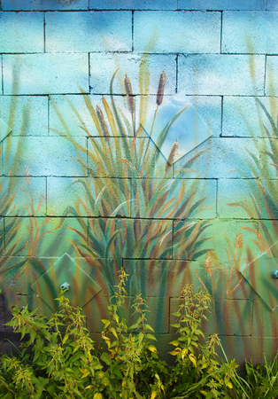 water weed: bunch of wild cane reed painted on a wall. Stock Photo