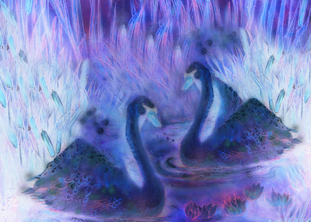 lila: decorative illustration in violet and lila tones of birds swimming on pond with reeds.