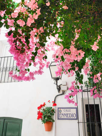 Typical street of the Andalusian white town, Spain, with flowerpots and bougainvillea, located in Mojácar, Almería. You can see the street name `calle Enmedio` that means` middle street` Archivio Fotografico