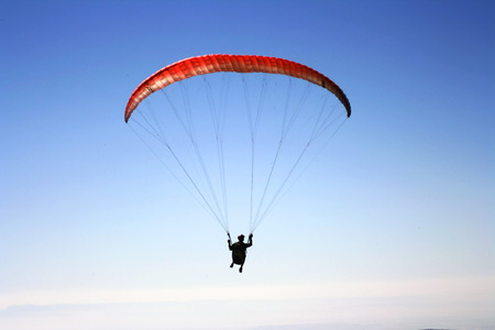 adrenalin: Flying free